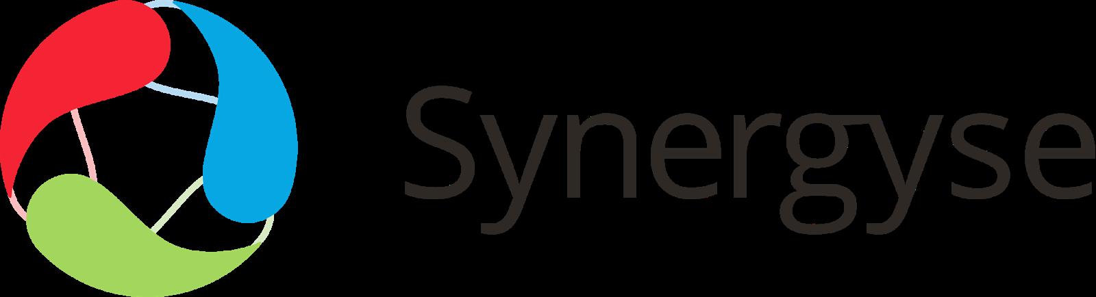 synergyse